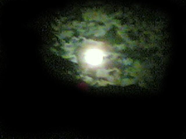 Angels In The Dark - Luna Piena